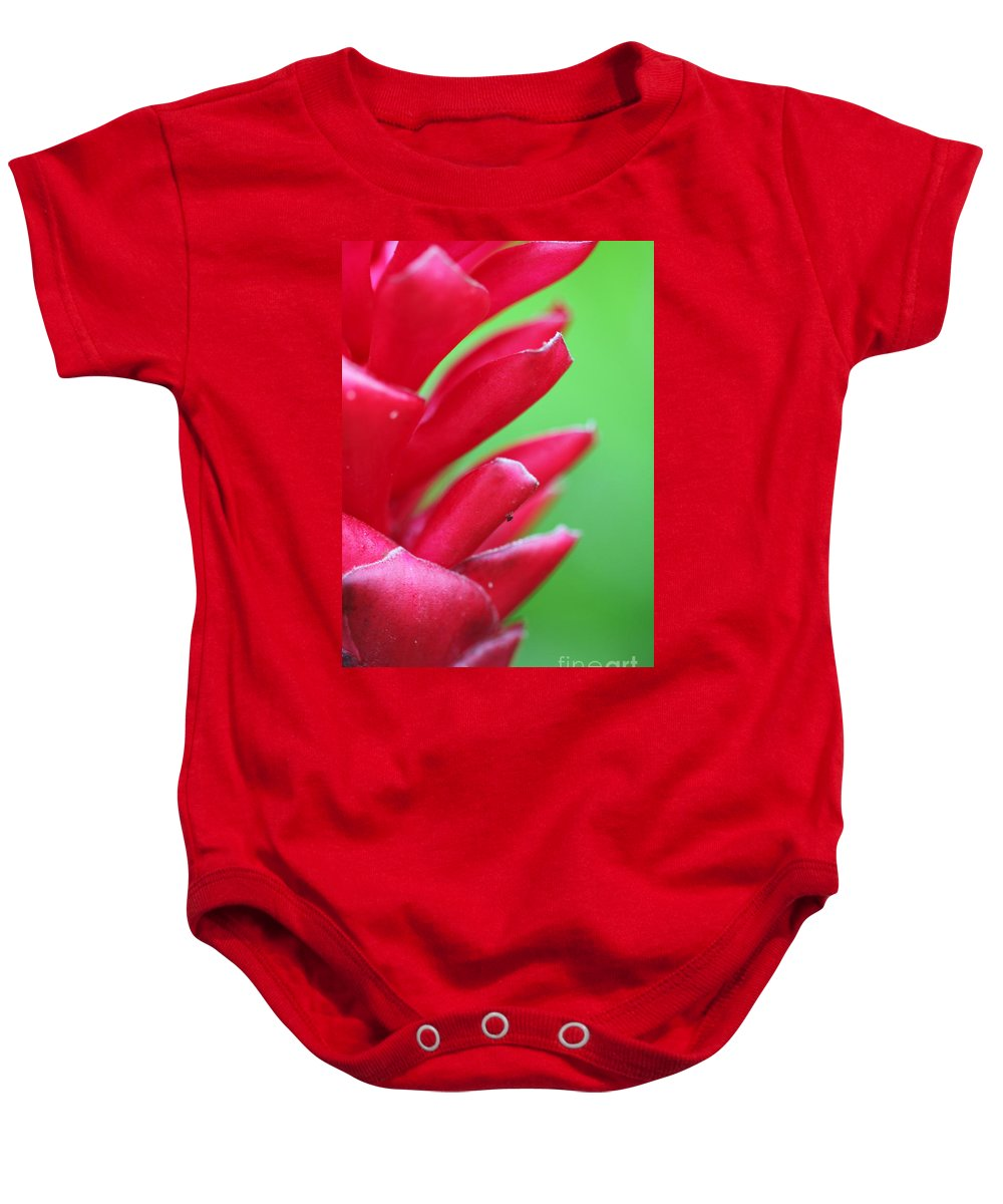 Ginger Baby Onesie featuring the photograph Pink Ginger by Nadine Rippelmeyer