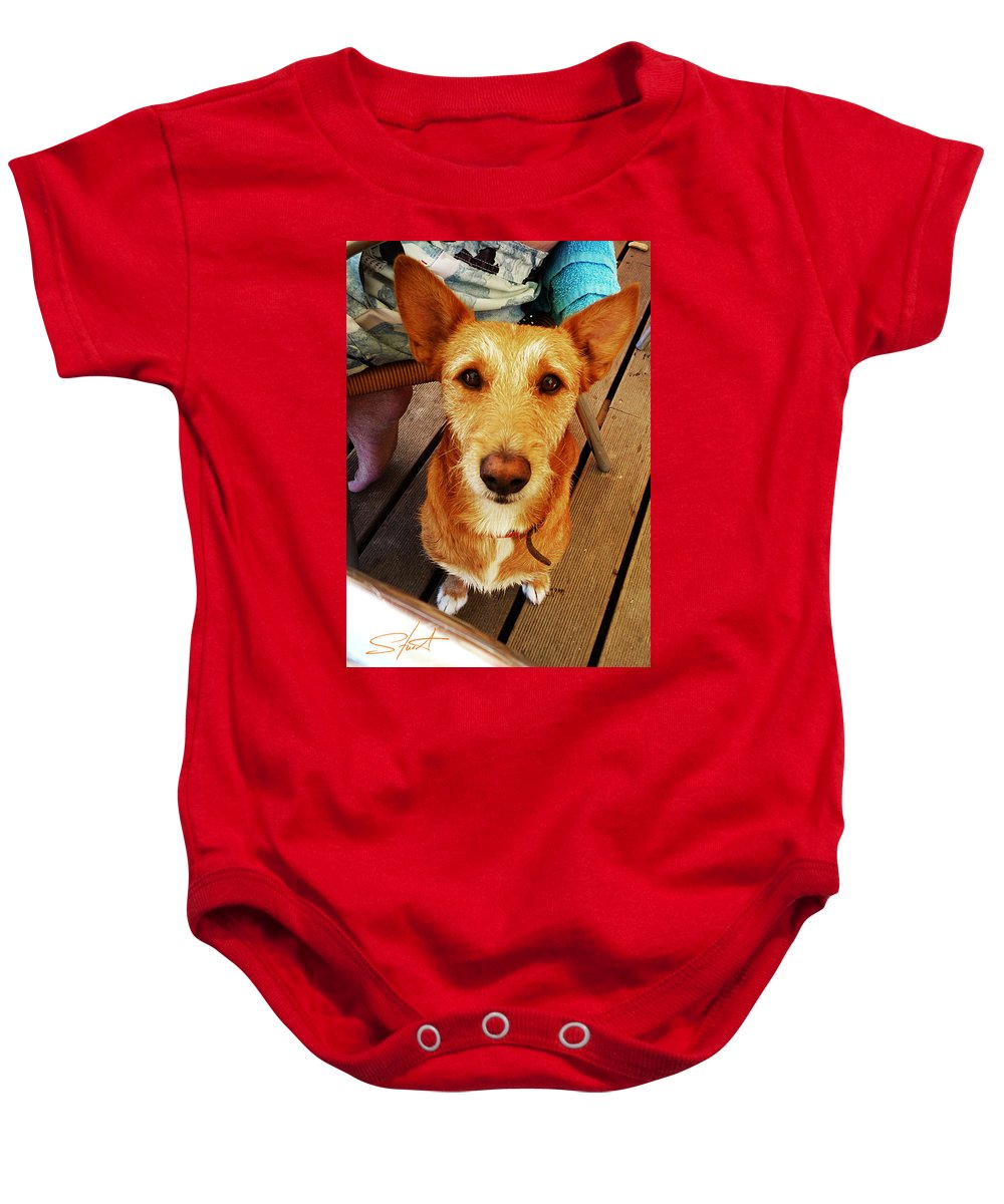 Pooch Baby Onesie featuring the photograph Pooch by Charles Stuart