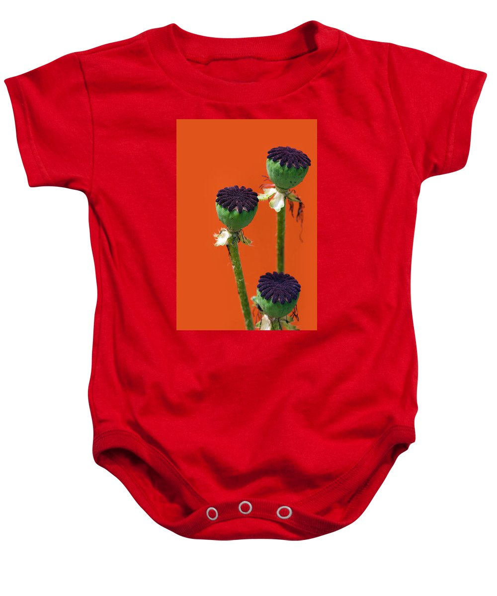 Interior Design Baby Onesie featuring the photograph Poppies On Orange by Lisa Knechtel
