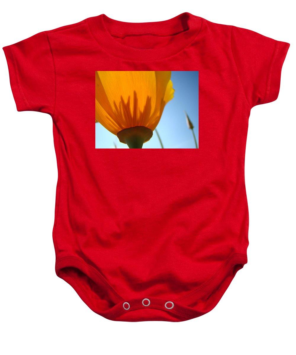 �poppies Artwork� Baby Onesie featuring the photograph Poppies Sunlit Poppy Flower 1 Wildflower Art Prints by Baslee Troutman