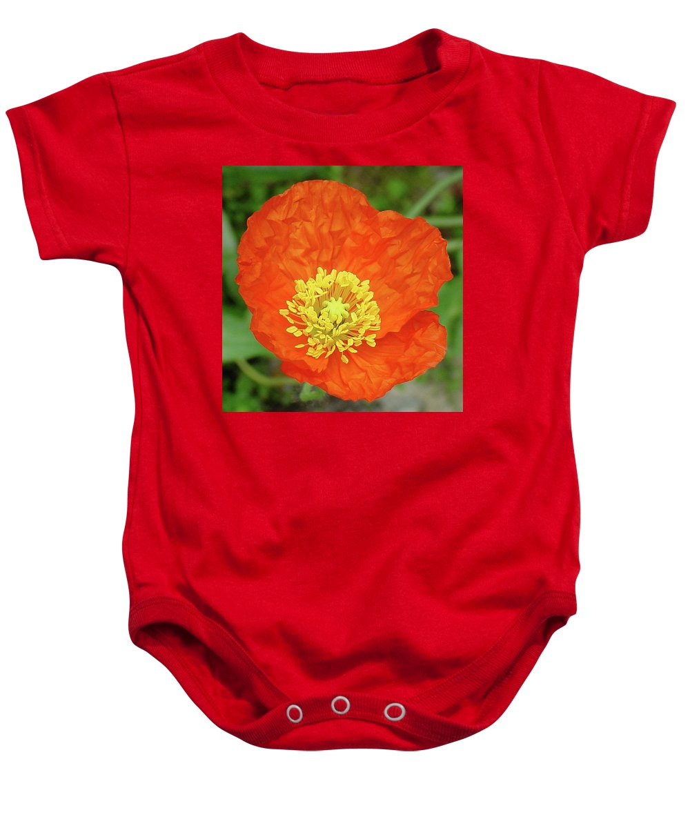 Center Baby Onesie featuring the photograph Poppy by Shirley Heyn