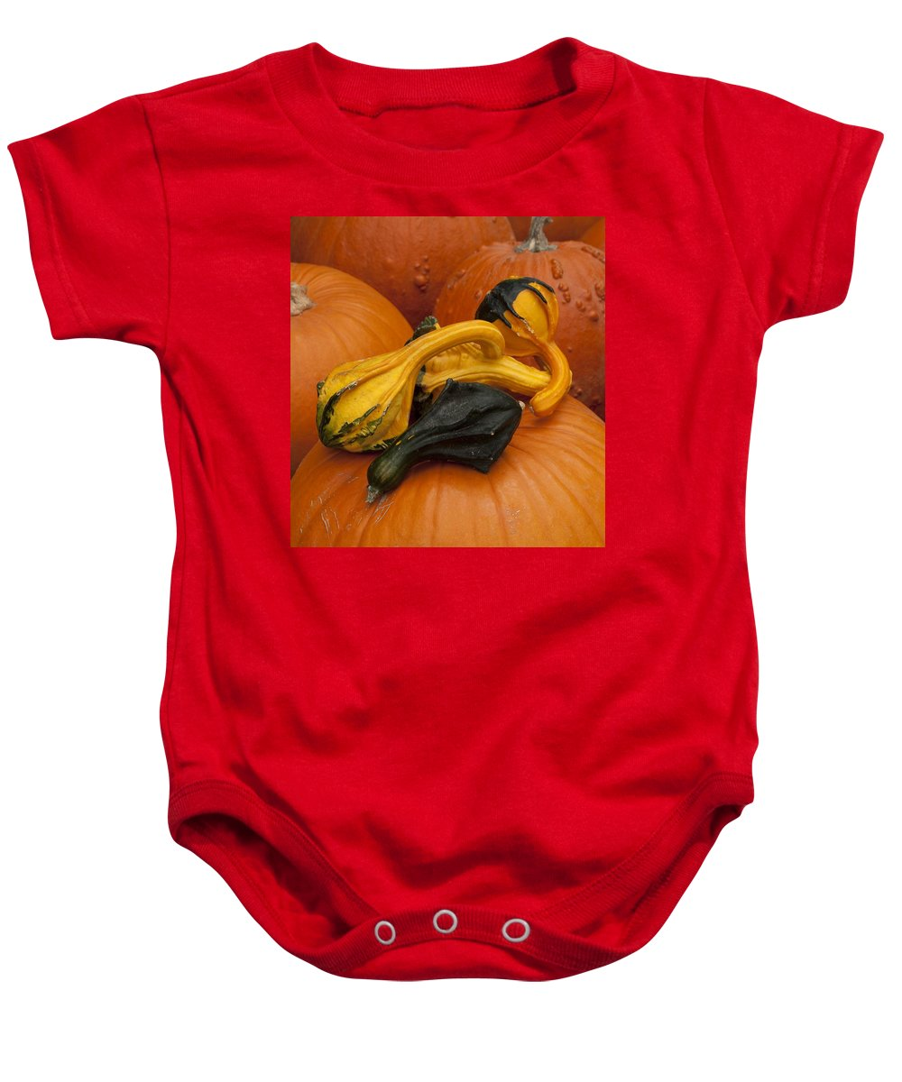 Pumpkin Baby Onesie featuring the photograph Pumpkins And Gourds by Steven Natanson