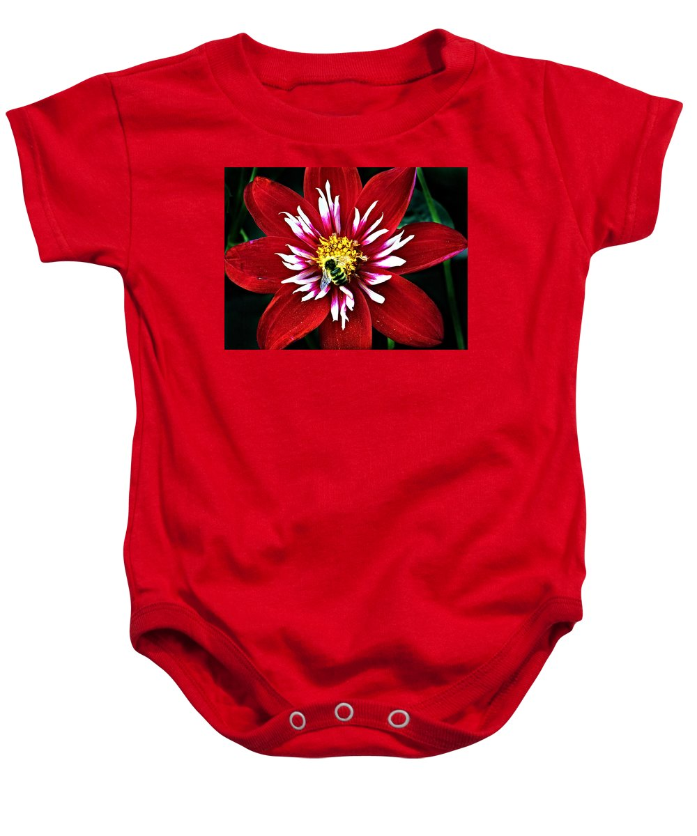 Flower Baby Onesie featuring the photograph Red And White Flower With Bee by Anthony Jones