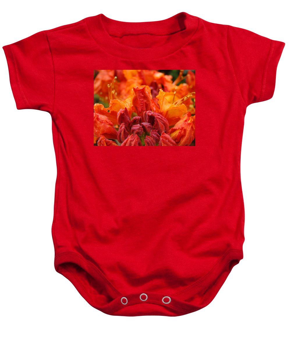 �azaleas Artwork� Baby Onesie featuring the photograph Red Azaleas Orange Azalea Flowers 9 Floral Giclee Art Prints Baslee Troutman by Baslee Troutman