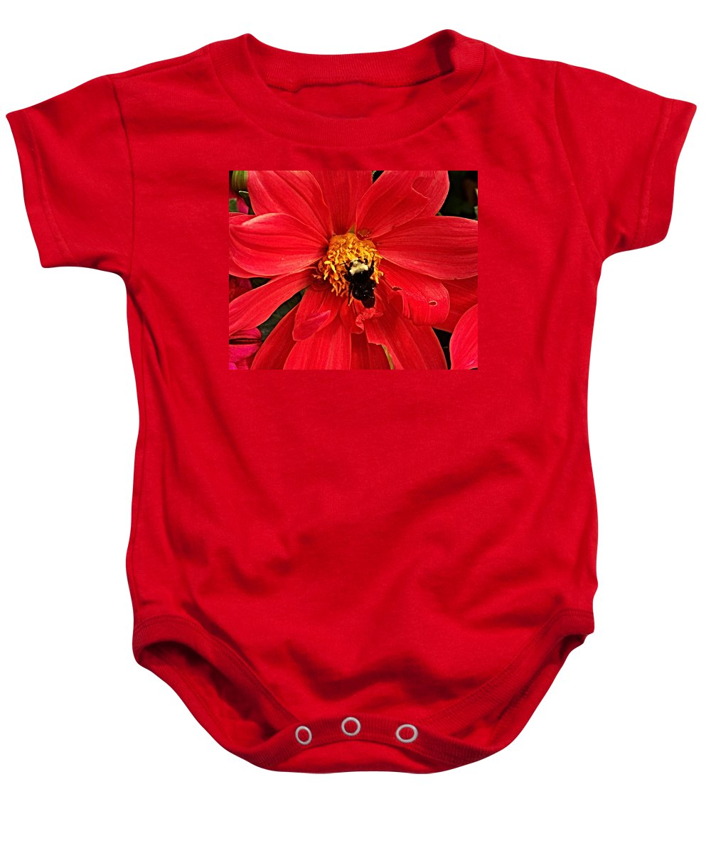 Flower Baby Onesie featuring the photograph Red Flower And Bee by Anthony Jones