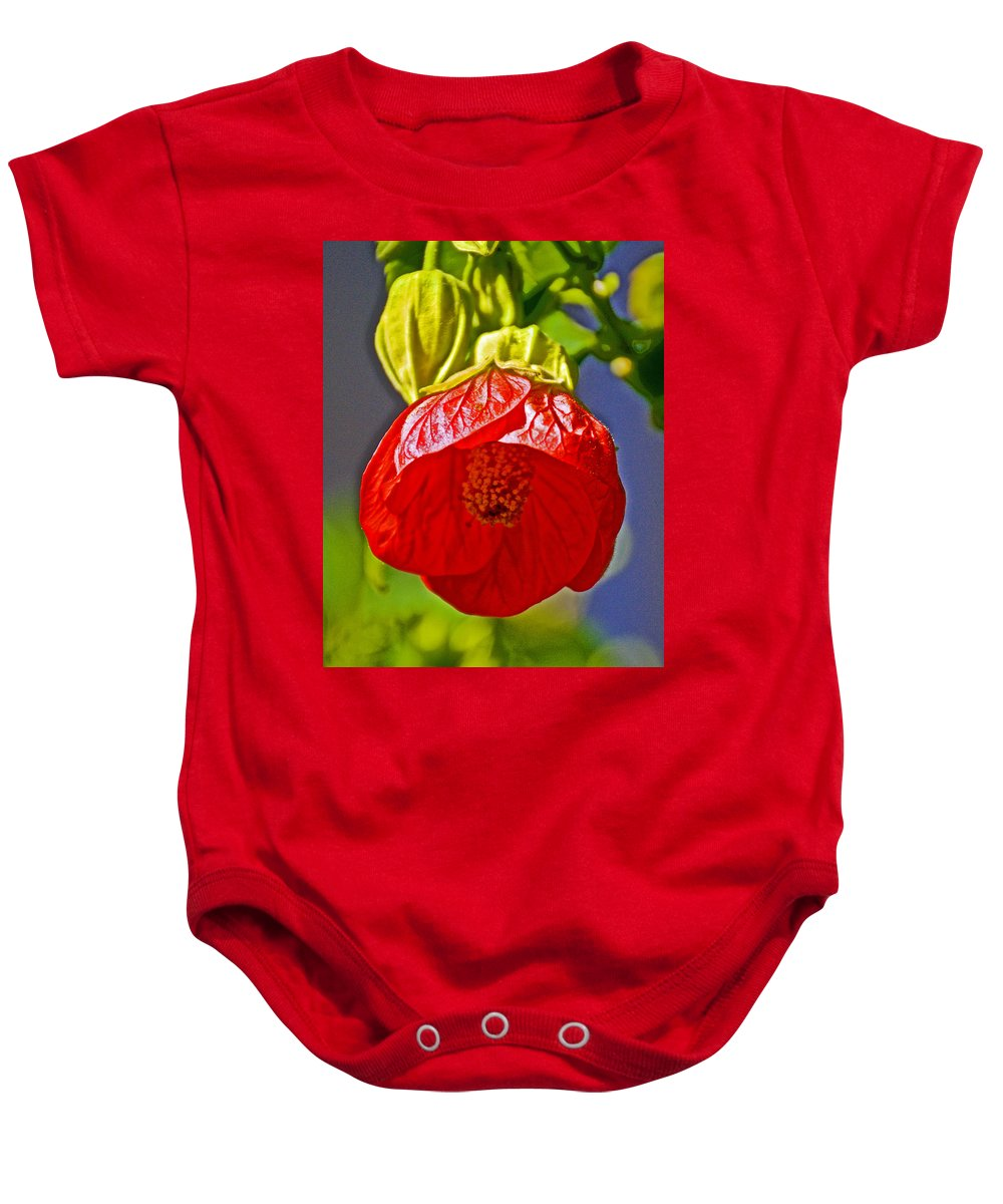 Red Flower At Pilgrim Place In Claremont Baby Onesie featuring the photograph Red Flower At Pilgrim Place In Claremont-california by Ruth Hager