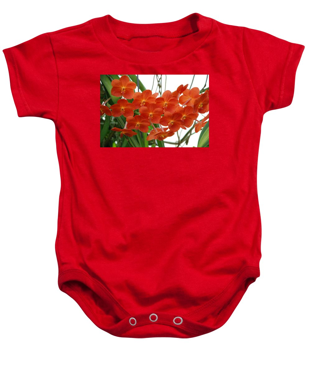 Macro Baby Onesie featuring the photograph Red Flowers by Rob Hans