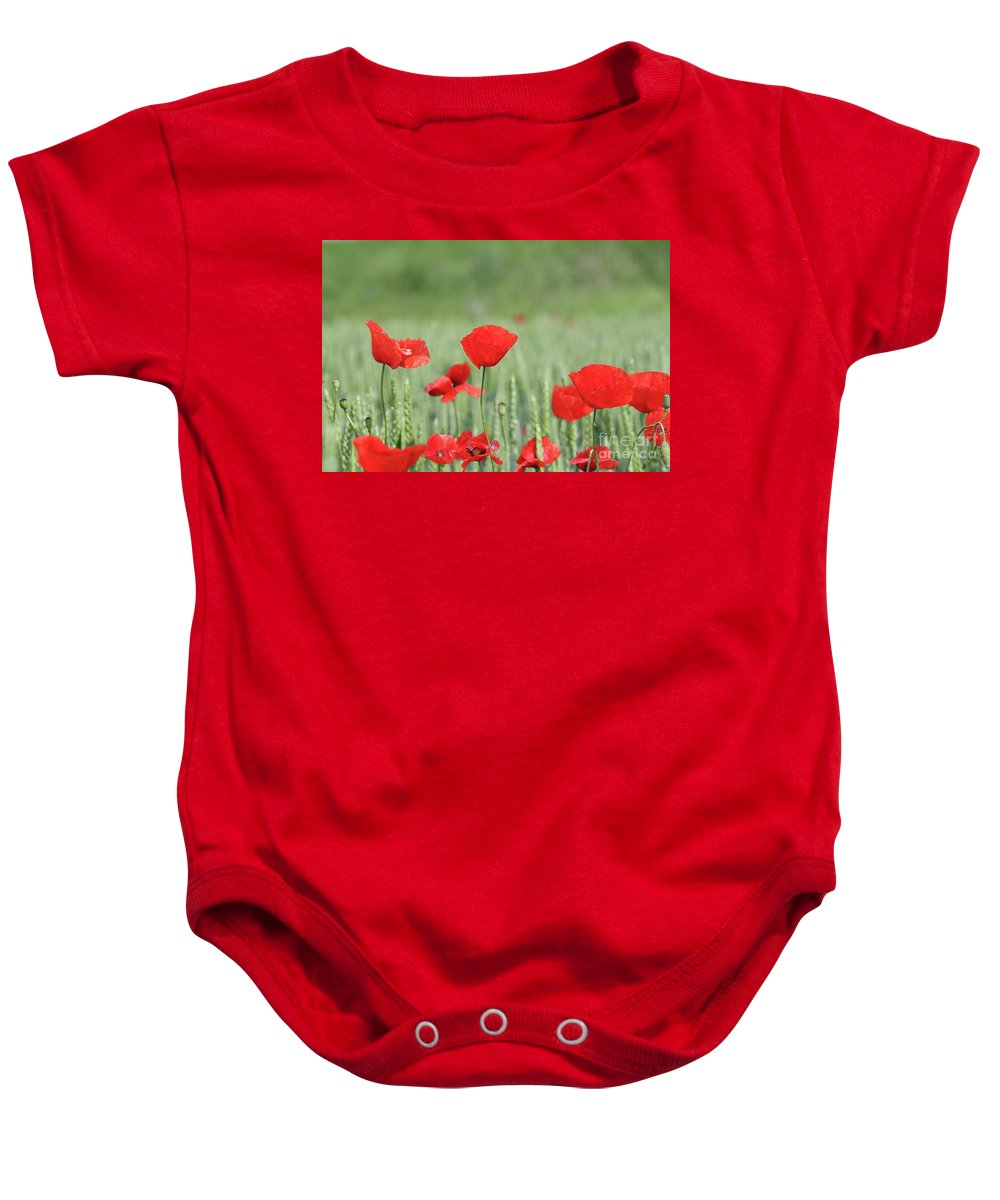 Wheat Baby Onesie featuring the photograph Red Poppy Flower And Green Wheat Nature Spring Scene by Goce Risteski
