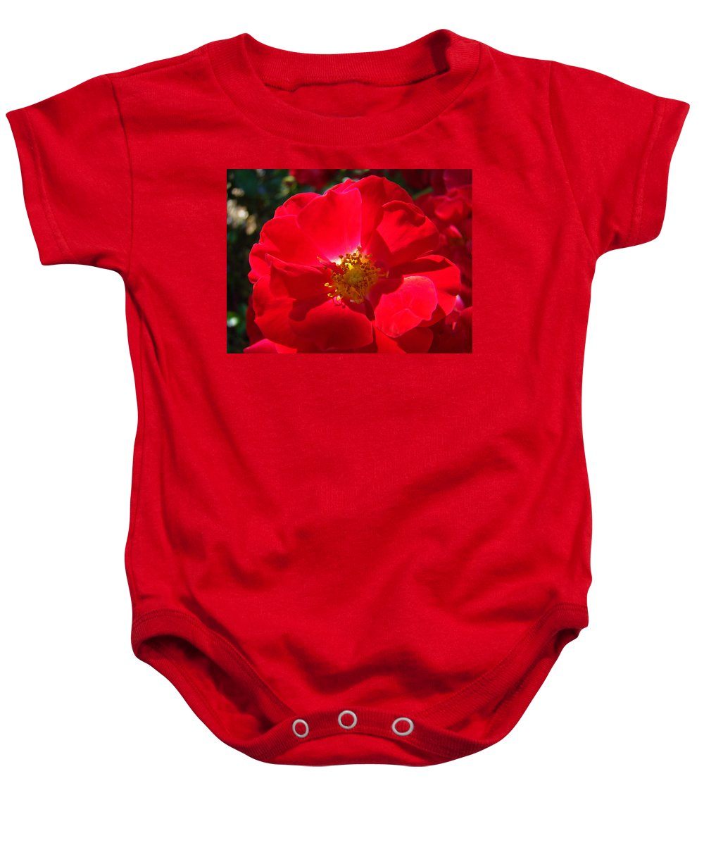 Rose Baby Onesie featuring the photograph Red Rose Art Print Sunlit Roses Botanical Giclee Baslee Troutman by Baslee Troutman