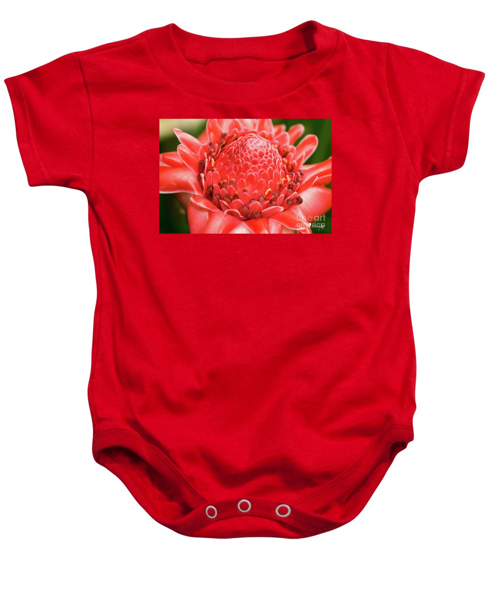 Bot Baby Onesie featuring the photograph Red Torch Ginger by Scott Pellegrin