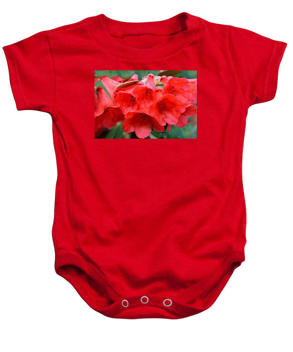 Rhododendron Baby Onesie featuring the photograph Red Trumpet Rhodies by Ginny Barklow