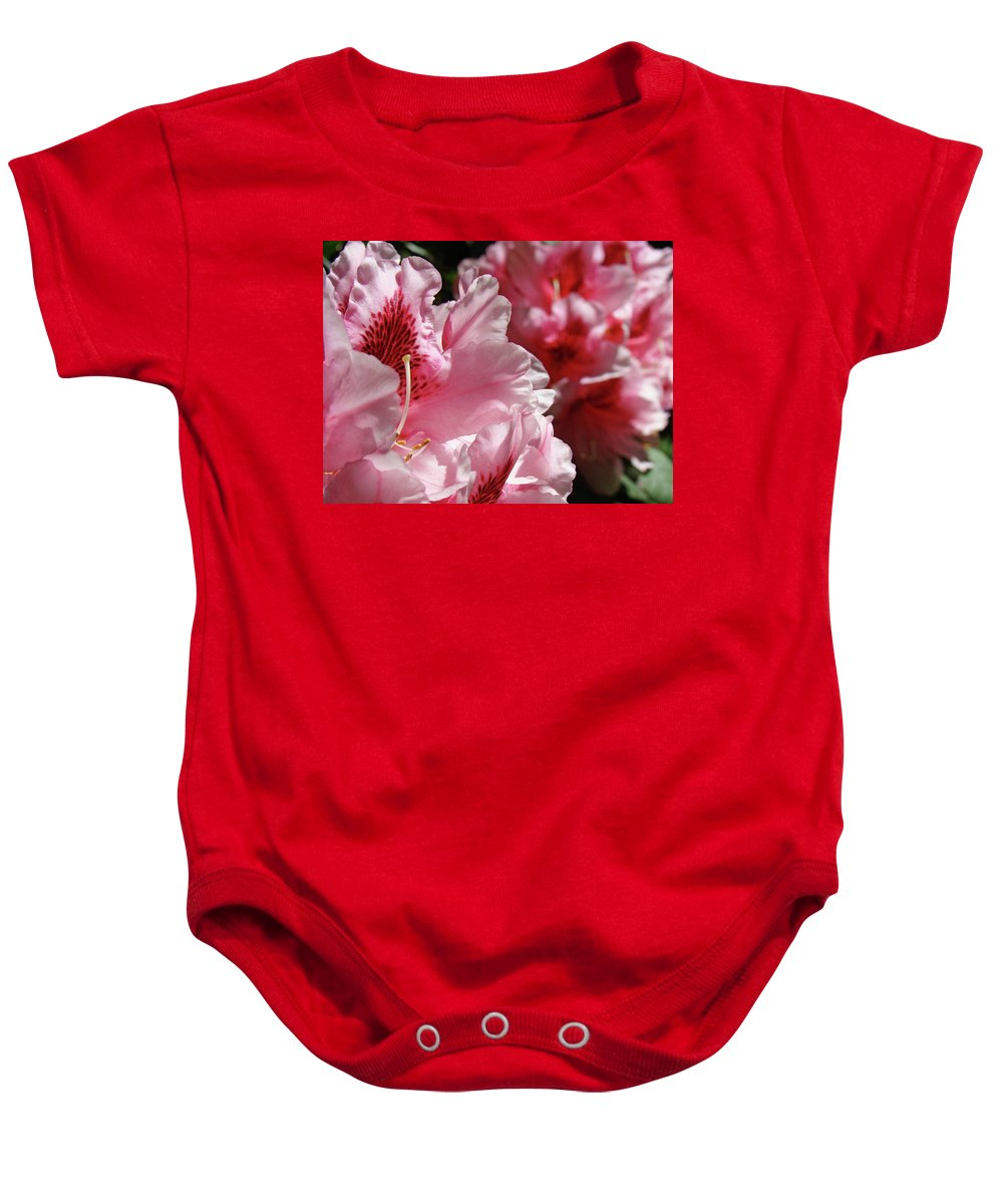 Rhodie Baby Onesie featuring the photograph Rhododendrons Art Prints Floral Pink Rhodies Canvas Baslee Troutman by Baslee Troutman