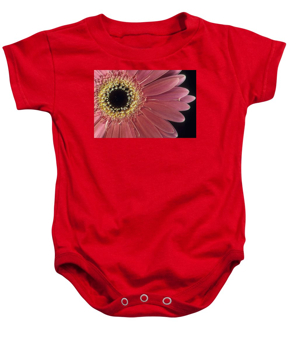 Salmon Gerber Daisy Baby Onesie featuring the photograph Salmon Gerber Daisy by Laurie Paci