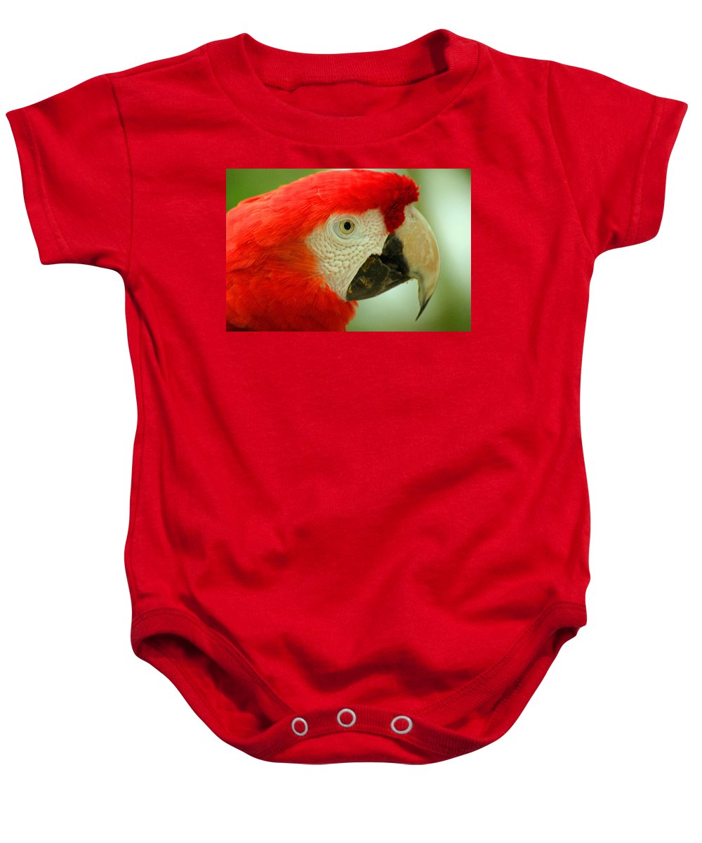 Parrot Baby Onesie featuring the photograph Scarlett Macaw South America by Ralph A Ledergerber-Photography