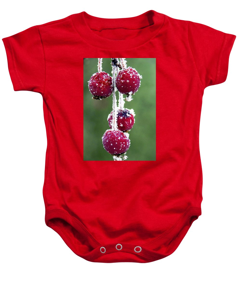 Berries Baby Onesie featuring the photograph Seasonal Colors by Marilyn Hunt