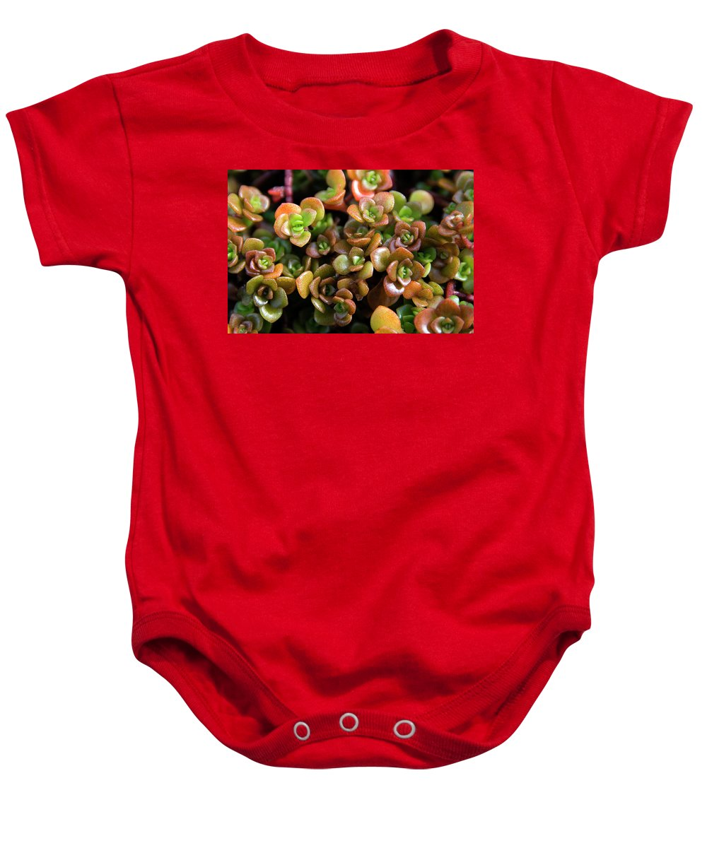 Succulent Baby Onesie featuring the photograph Seeing Succulents by Susan Wright