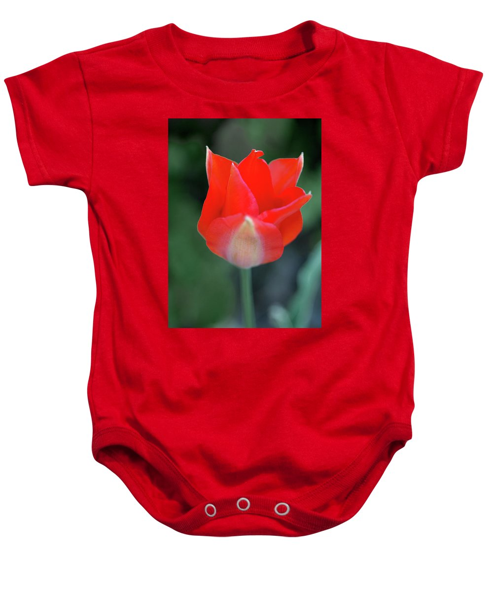 Flower Baby Onesie featuring the photograph Single Red by Jess Kruk