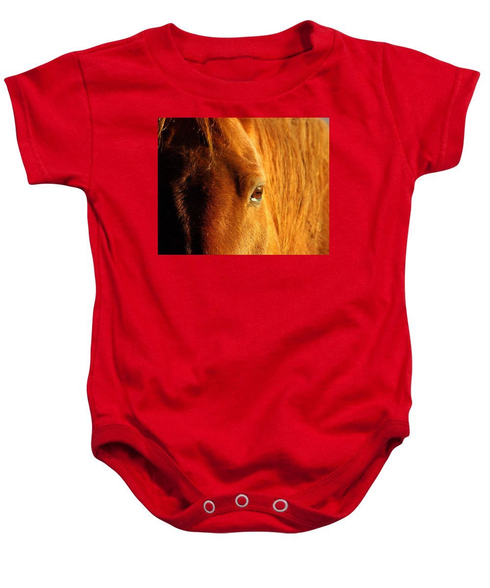 Jenny Gandert Baby Onesie featuring the photograph Sunlight Eyes by Jenny Gandert