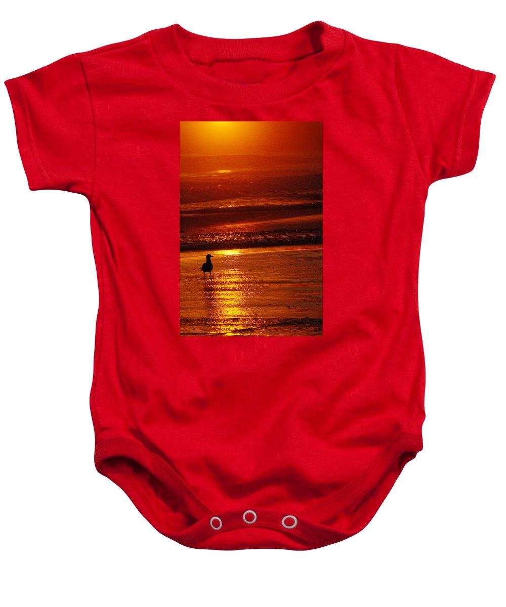 Sunset Baby Onesie featuring the photograph Sunset Bird 2 by Jill Reger