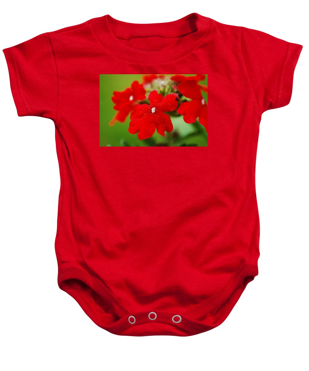 Verbena Baby Onesie featuring the photograph The Color Of Love by Lori Tambakis