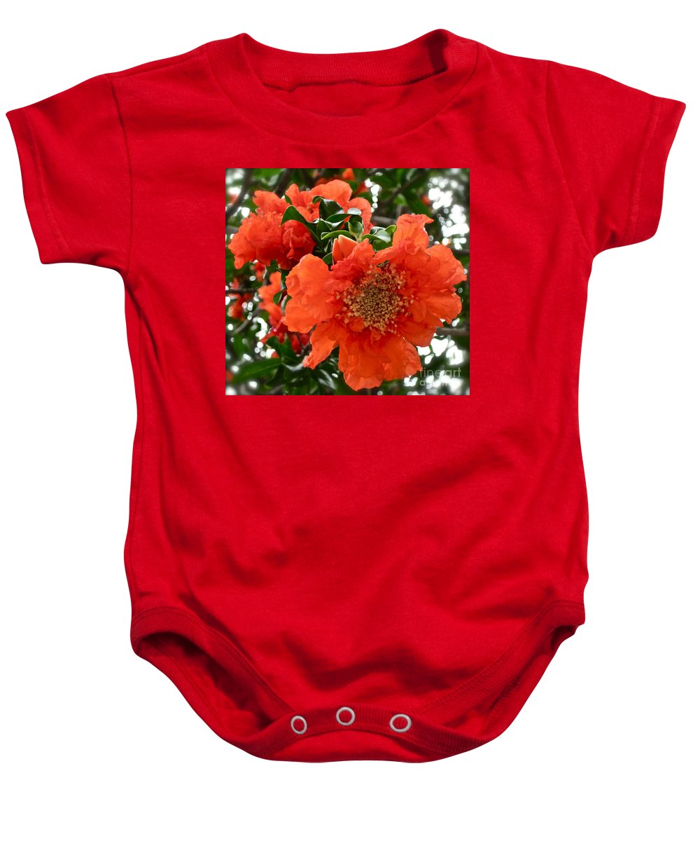 Orange Flower Baby Onesie featuring the photograph The Colour Orange by Gwyn Newcombe