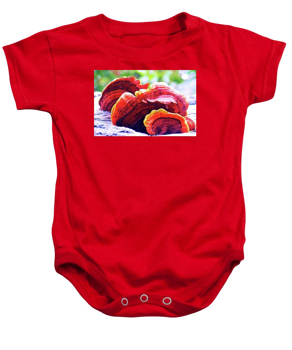 Three Baby Onesie featuring the digital art Three Upon A Tree by Ronald Irwin