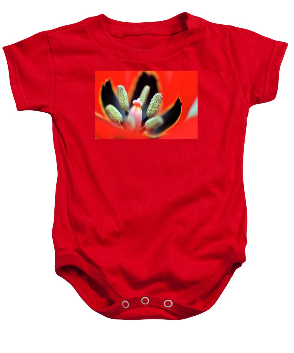 Tulip Baby Onesie featuring the photograph Tulip At Amatzia Forest - 5 by Dubi Roman