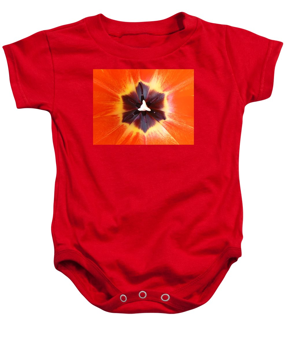 Tulip Baby Onesie featuring the photograph Tulip by Daniel Csoka