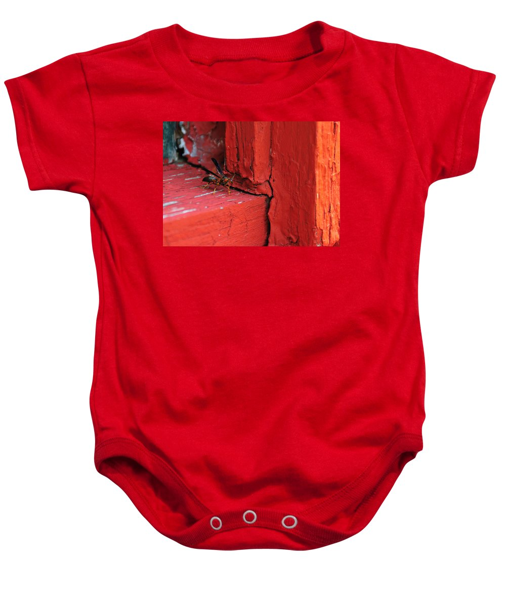 Wasp Baby Onesie featuring the photograph Wasp And Red by David Arment