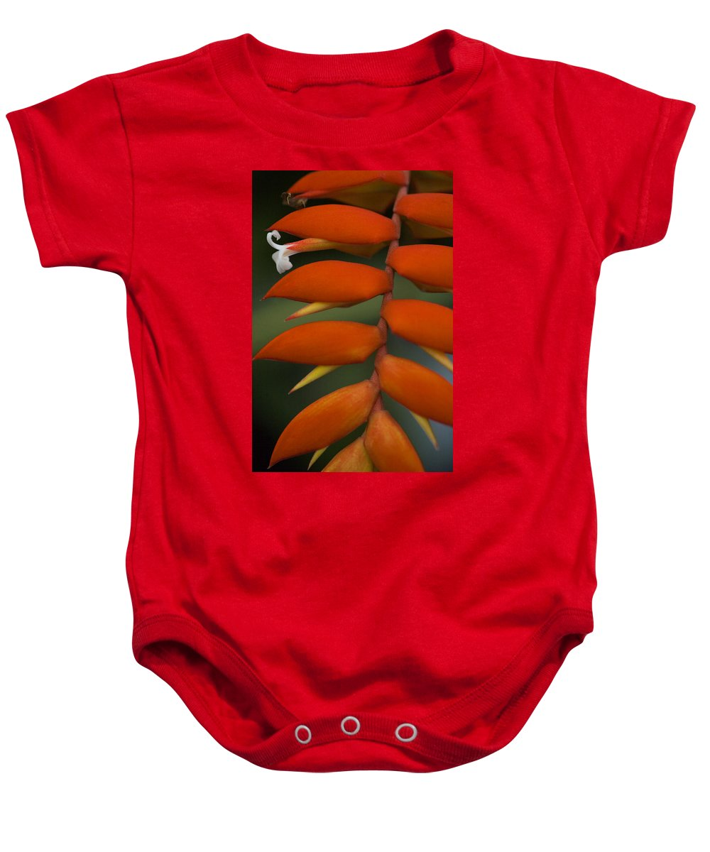 Heliconia Baby Onesie featuring the photograph White Flower by Karen Ulvestad