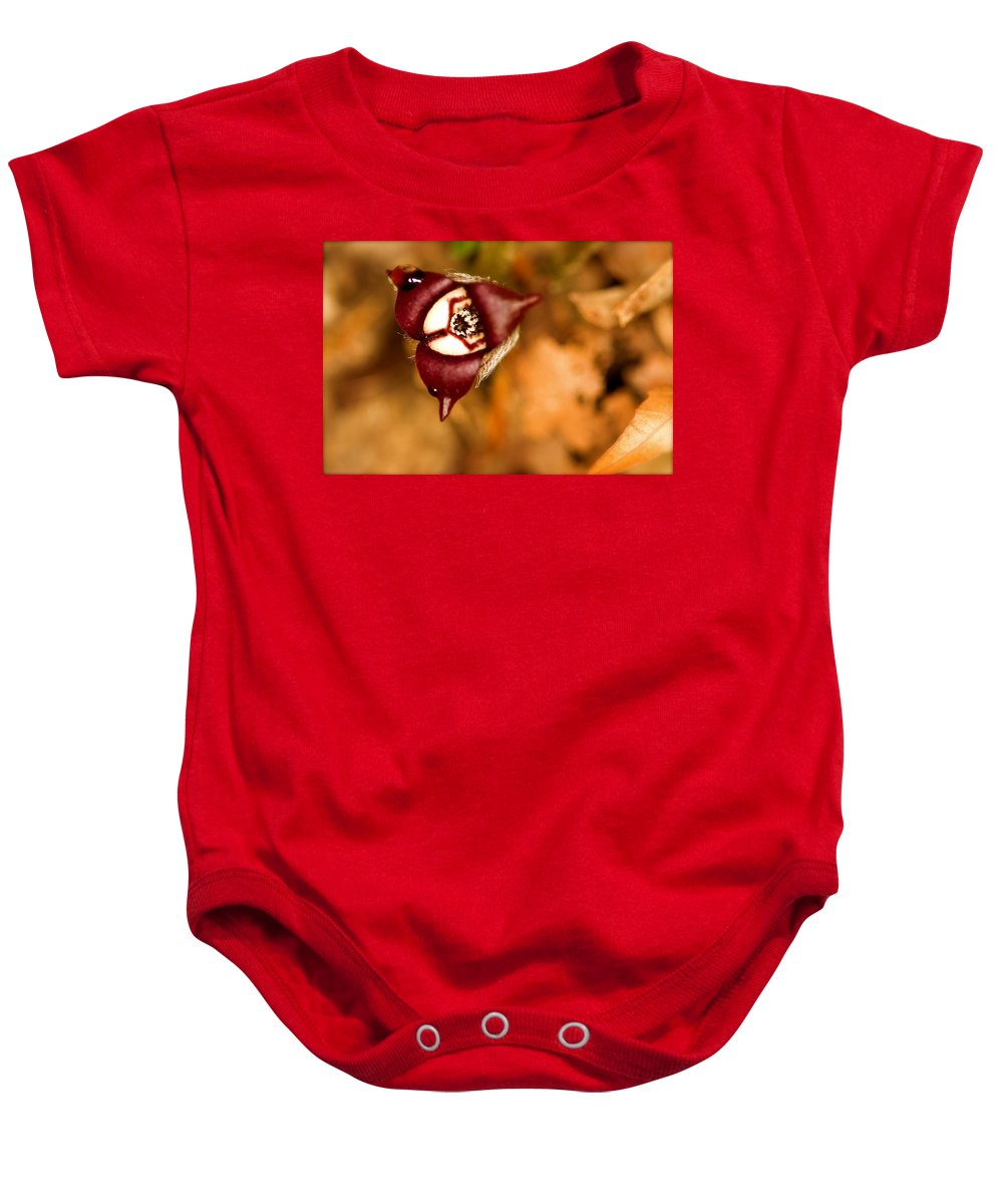 Beautiful Baby Onesie featuring the photograph Wild Ginger by Jack R Perry