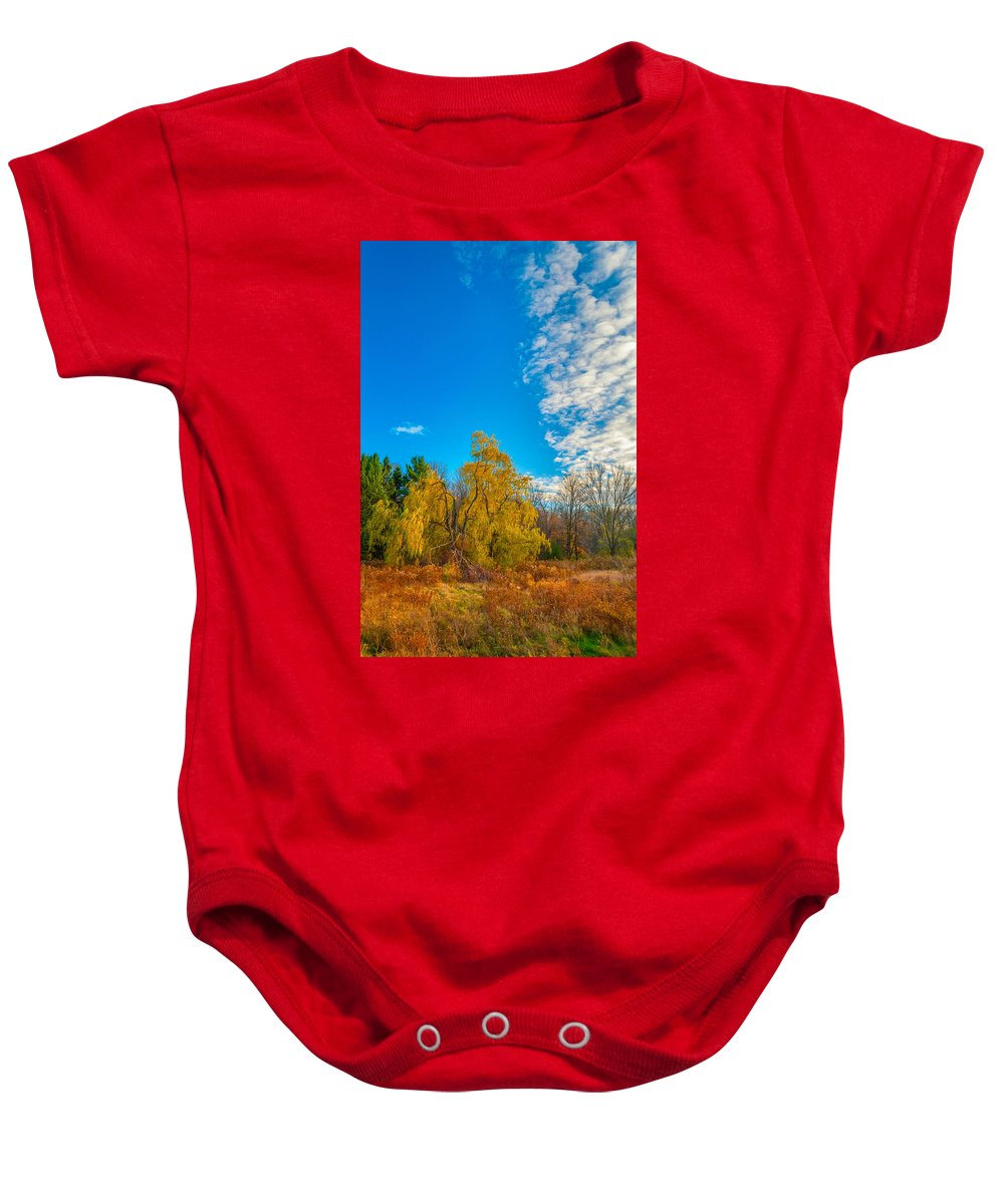 Willow Baby Onesie featuring the photograph Wind In The Willows 3 by Steve Harrington