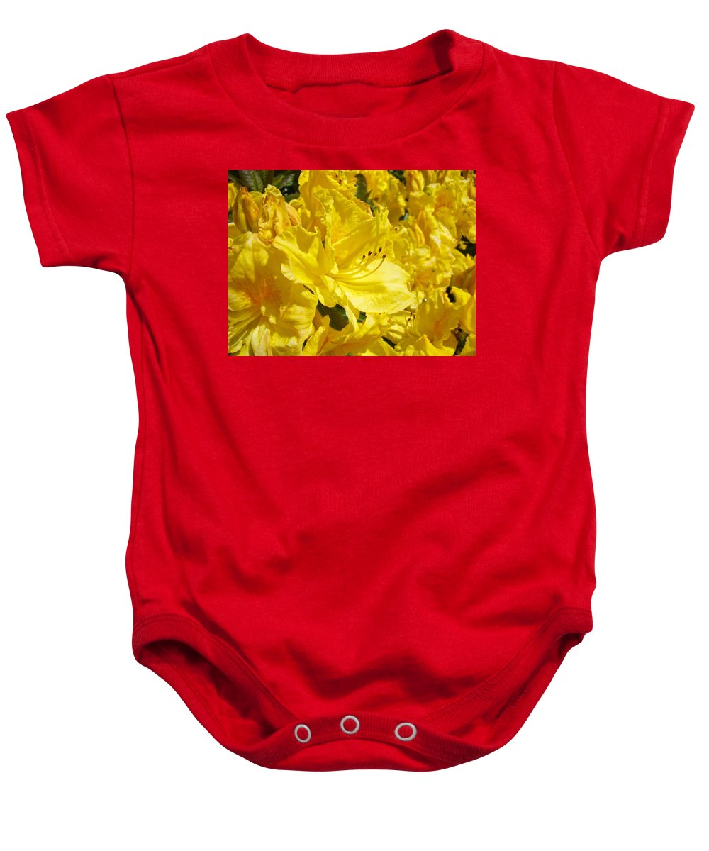 Rhodies Baby Onesie featuring the photograph Yellow Rhodies Floral Brilliant Sunny Rhododendrons Baslee Troutman by Baslee Troutman