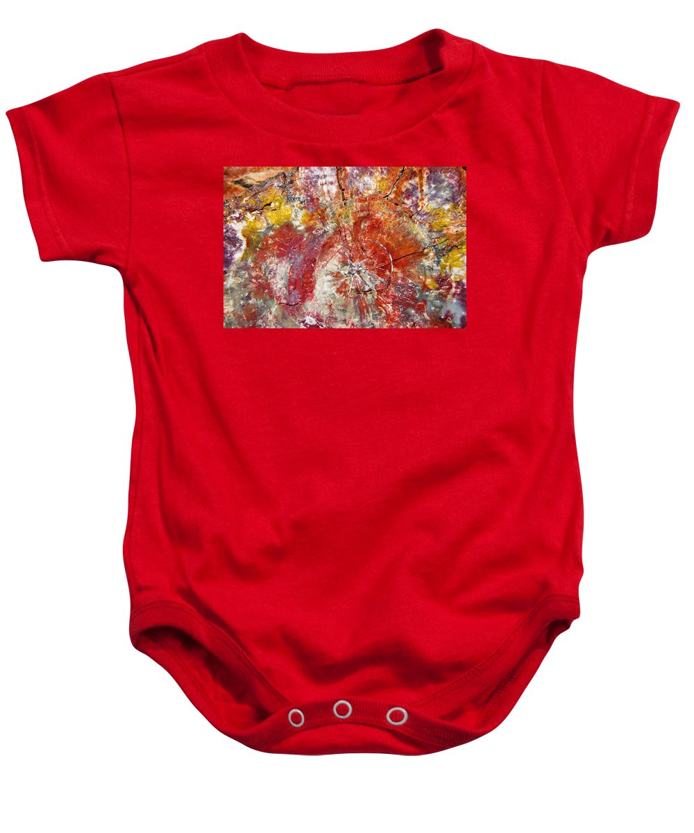 Petrified Wood Stone Texture Abstract Color Skip Hunt Baby Onesie featuring the photograph Painted Desert Wood 1 by Skip Hunt