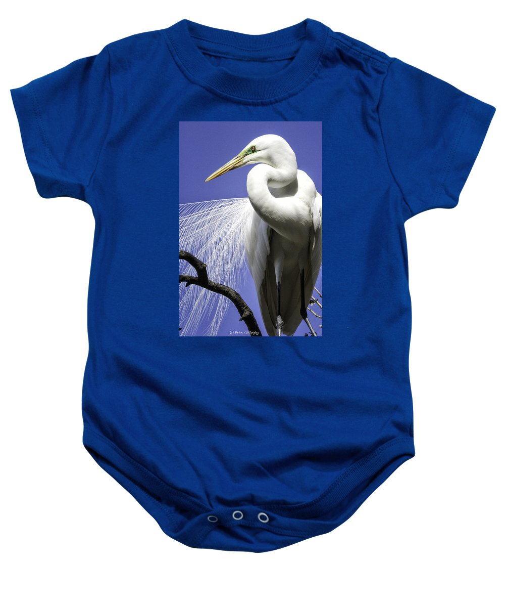 Bird Baby Onesie featuring the photograph Great Egret by Fran Gallogly