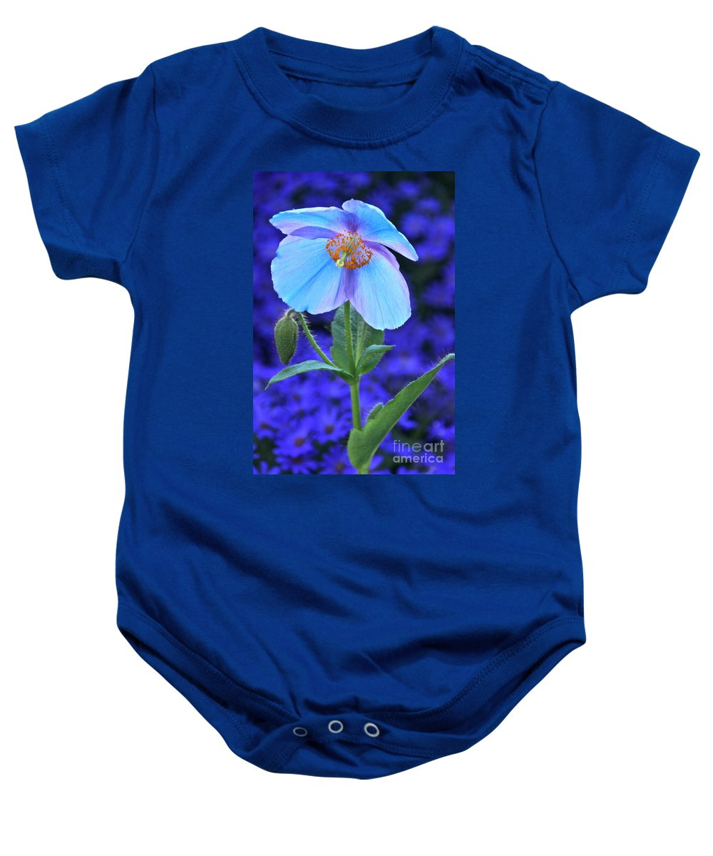 Single Himalayan Blue Poppy Baby Onesie featuring the photograph Aglow In Blue Tall View by Byron Varvarigos