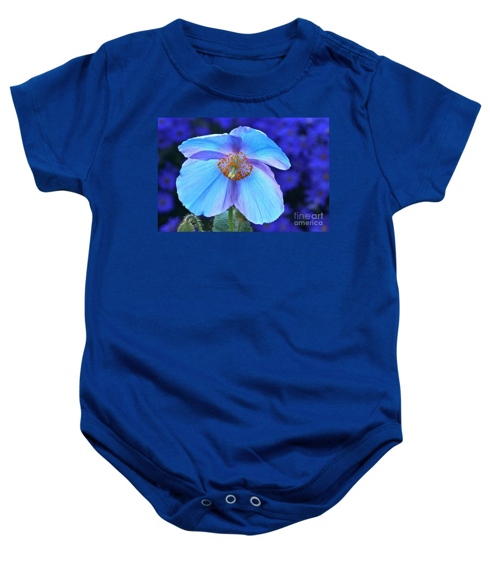 Single Himalayan Blue Poppy Baby Onesie featuring the photograph Aglow In Blue Wide View by Byron Varvarigos