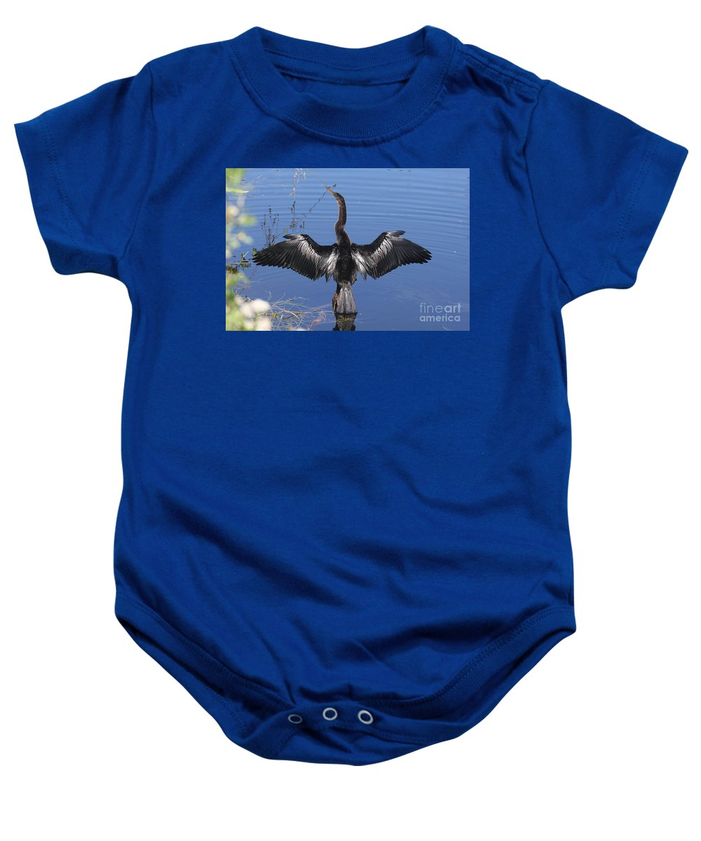 Anhinga Baby Onesie featuring the photograph Anhinga Sunbathing by Christiane Schulze Art And Photography