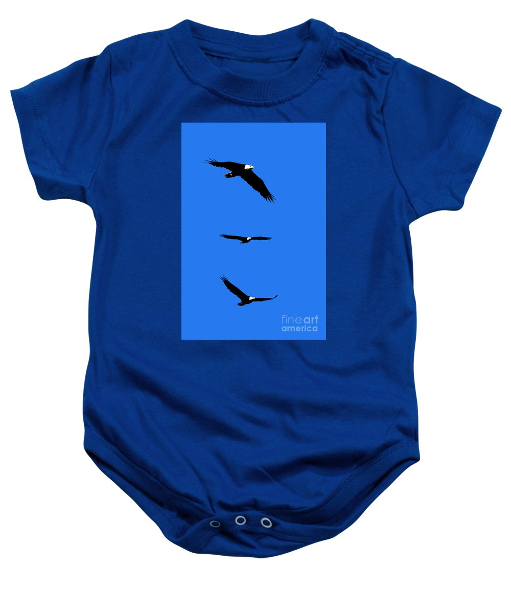Eagle Baby Onesie featuring the photograph Bald Eagle Triptych by Thomas Marchessault