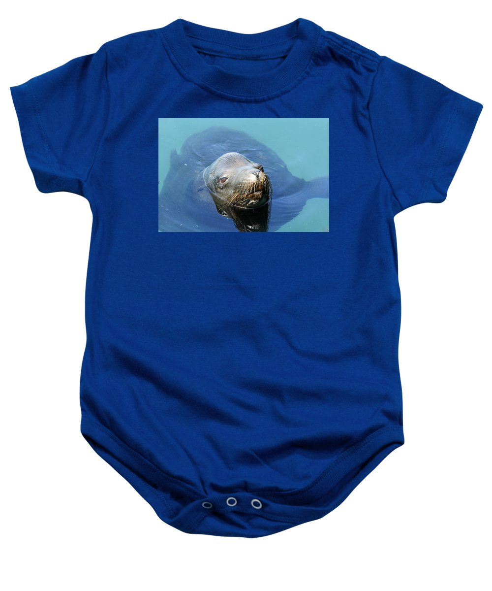 Sea Lion Baby Onesie featuring the photograph California Sea Life by Shoal Hollingsworth