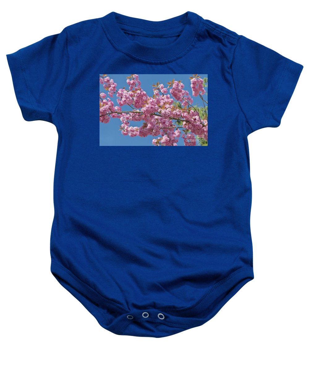 Cherry Blossoms Baby Onesie featuring the photograph Cherry Blossoms by Sharon Talson
