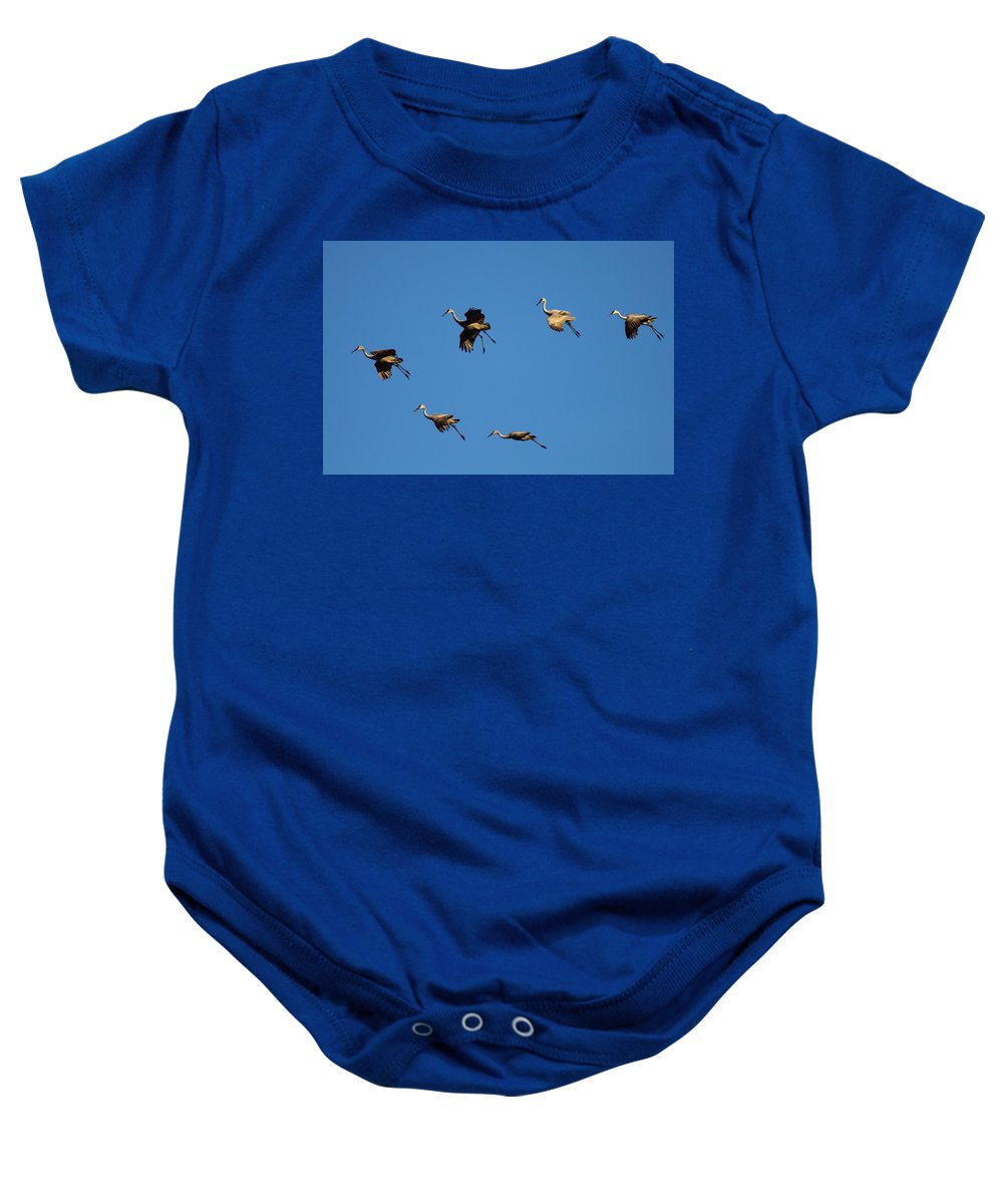 Crane Baby Onesie featuring the photograph Flight Formation by Bruce J Robinson