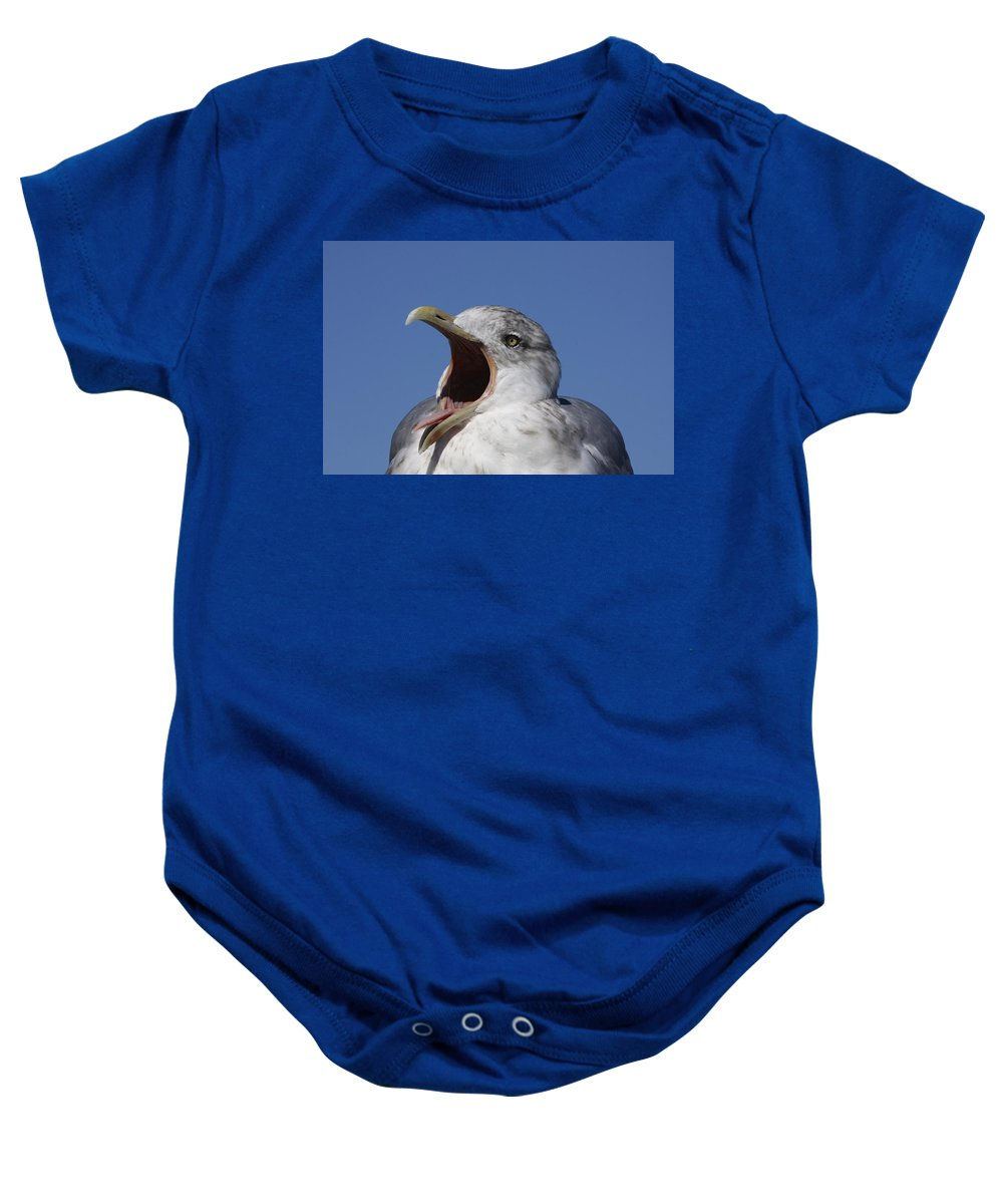 Cape Cod Baby Onesie featuring the photograph Gull by Stuart Litoff