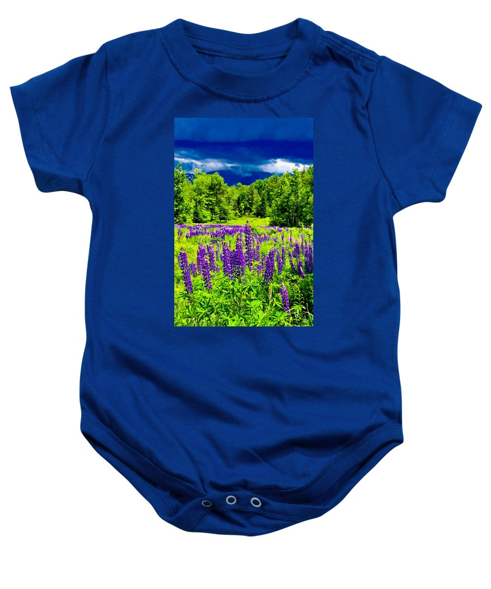 Crawford Notch Baby Onesie featuring the photograph Lupines Light by Greg Fortier