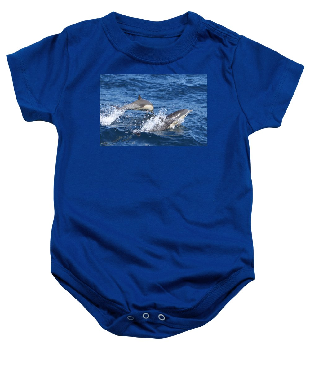 Dolphins Baby Onesie featuring the photograph Make A Splash by Shoal Hollingsworth