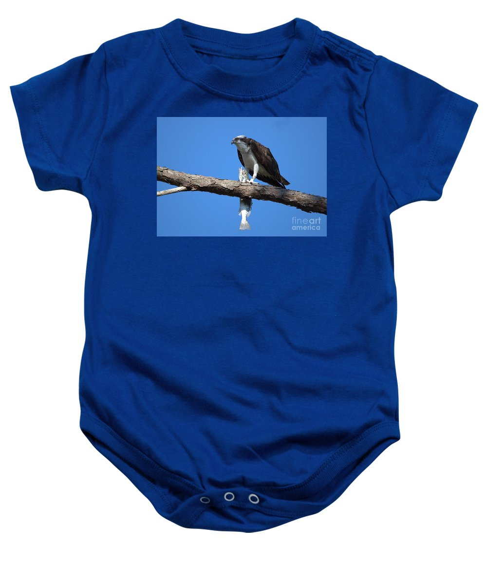 Osprey Baby Onesie featuring the photograph Osprey And Fish No.4 by John Greco