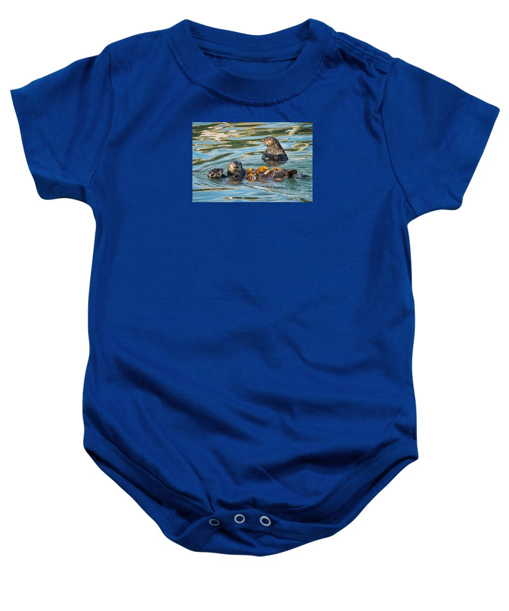 Animal Baby Onesie featuring the photograph Play Time by Alice Cahill