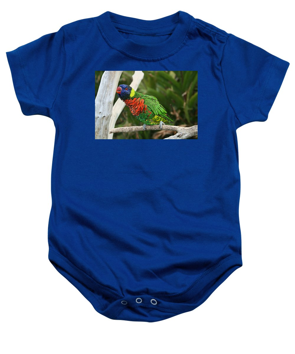 Pretty Bird Baby Onesie featuring the photograph Pretty Bird by Ellen Henneke
