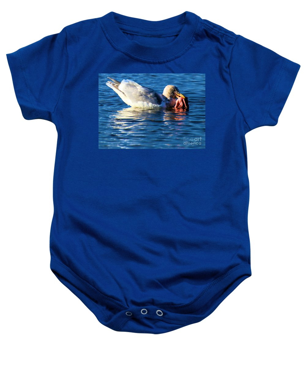 Sea Gull Baby Onesie featuring the photograph Salmon Delight by Adam Jewell
