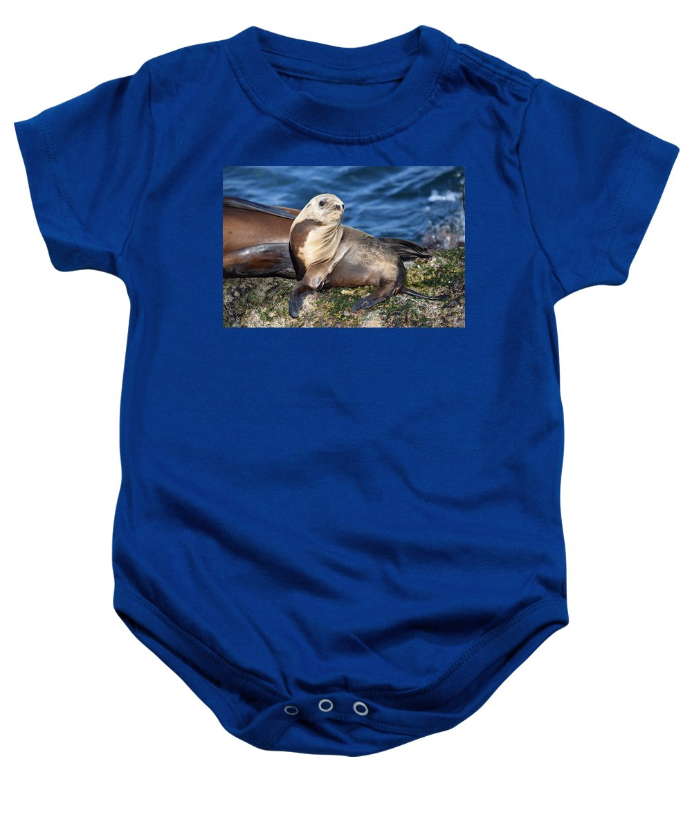 Sea Lions Baby Onesie featuring the photograph Sea Lion Pup by Eric Johansen
